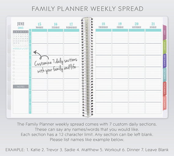 Life Planner for Plum Paper