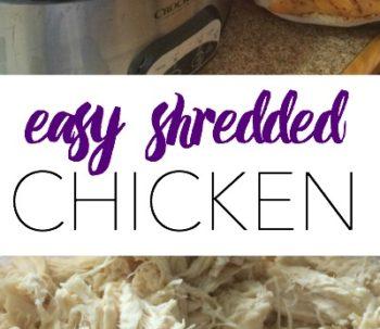 easyshreddedchicken